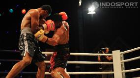 16 Petinju Berebut Gelar WBO di Bali